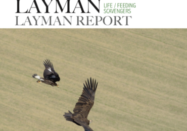 """Layman"" report final summary of the LIFE + ""Feeding Savengers"""