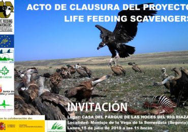 Closing ceremony of the LIFE Feeding Scavengers project