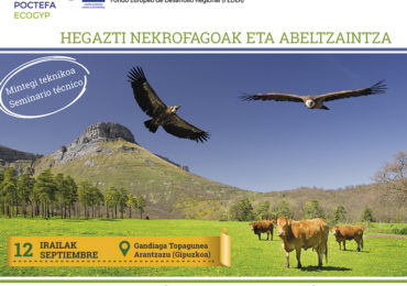 WE PARTICIPATE IN TECHNICAL MEETING ON VULTURES AND LIVESTOCK IN ARANTZAZU