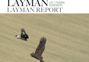 """Layman"" report final summary of the LIFE + ""Feeding Savengers"""